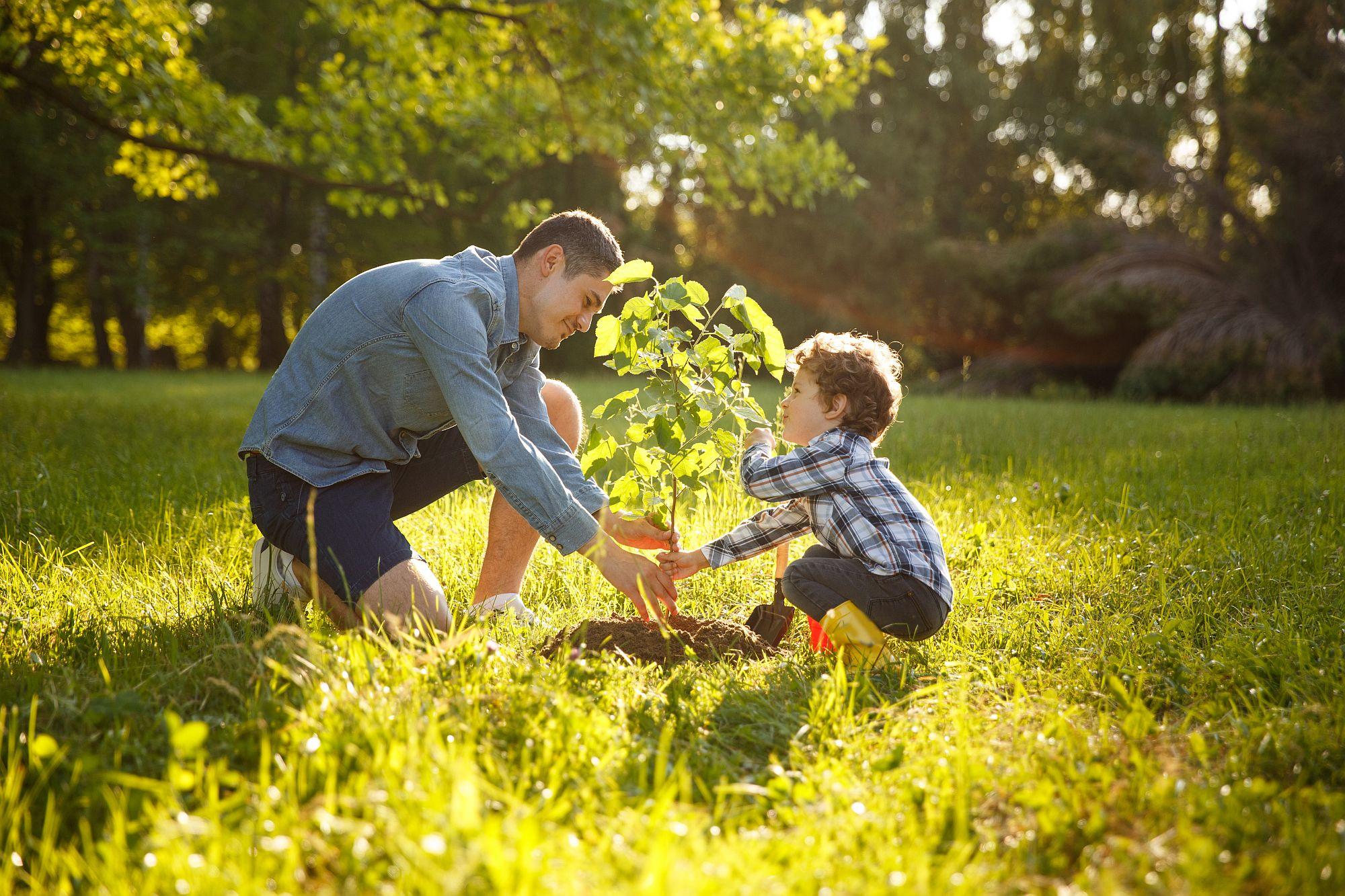 Baukindergeld wird nur bis zum 31. März 2021 verlängert: Wer jetzt baut, schafft die Fristen für die Förderung